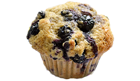 Jordan Marsh Blueberry Muffin